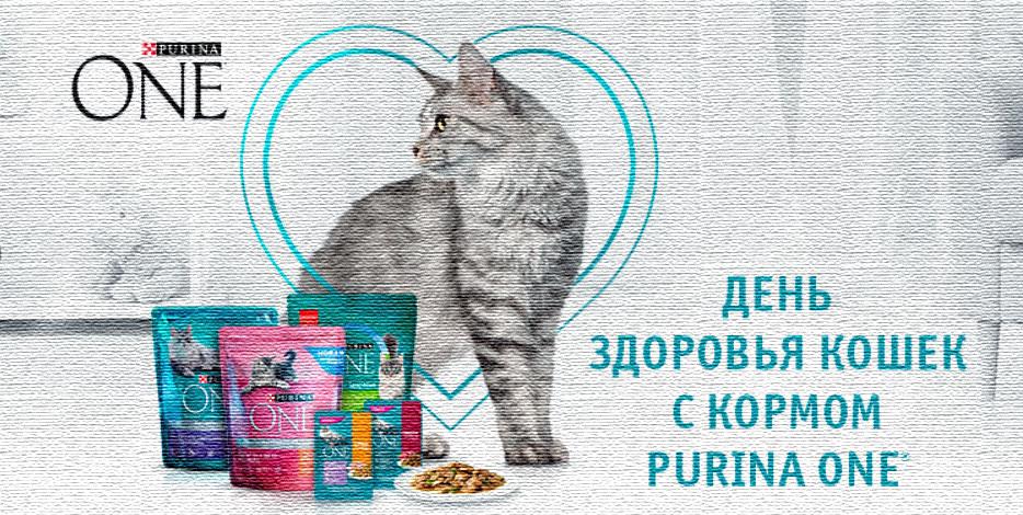 Акция Nestle Purina One в Ашане «День здоровья кошек»